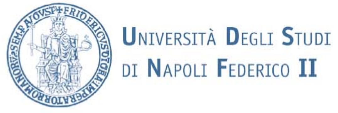 University of Napoli