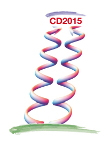 The 8th International Workshop on Chiral Dynamics 2015